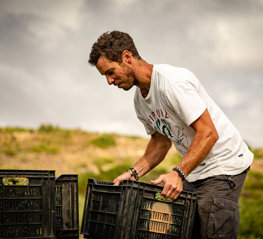 About making natural wine